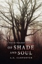 of-shade-and-soul-cover